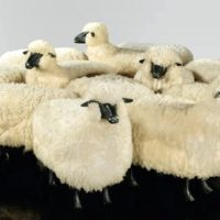 Image de Sculpture «Troupeau moutons», 1966-1969
